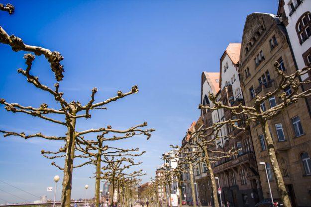 Kulinarische Stadtführung in Düsseldorf – Carlstadt