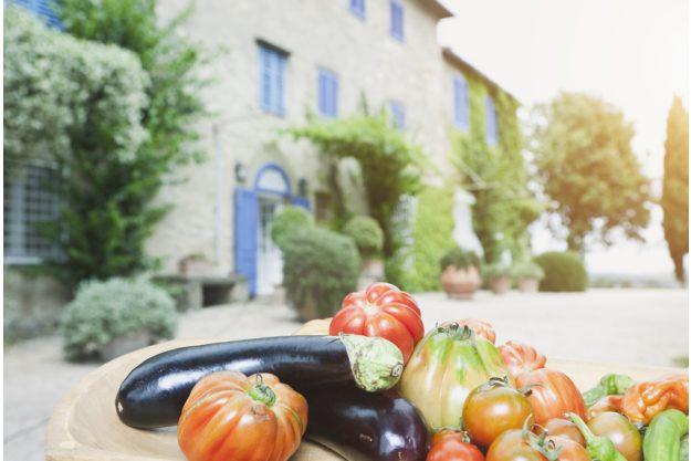 mediterraner Kochkurs Dresden – Gemüseauswahl