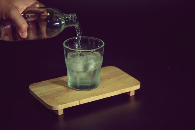 Spirituosen-Tasting Frankfurt-Hofheim – Gin auf Eis