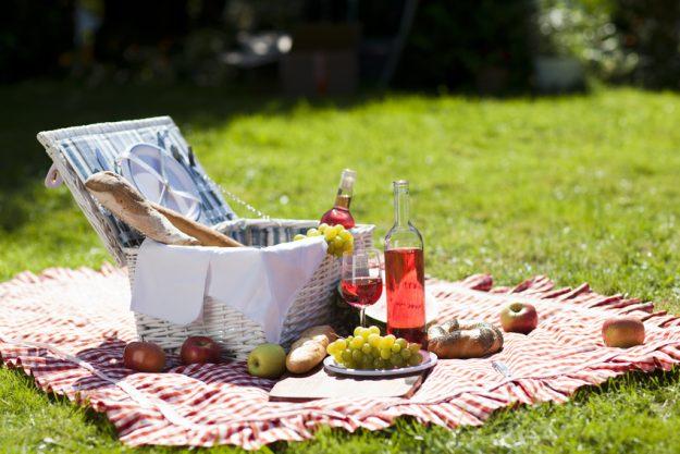 Vegetarischer Kochkurs Stuttgart - Picknick im Sommer Park