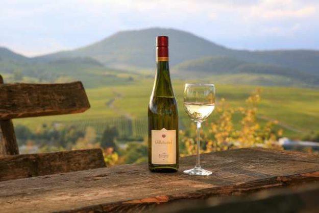Weinwanderung online mit Essen Wein