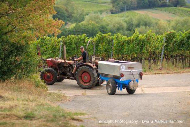 Weinwanderung online Traktor
