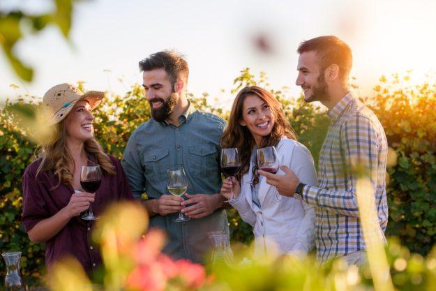 Weinprobe mit Weinwanderung Dresden - Weinverkostung im Weinberg