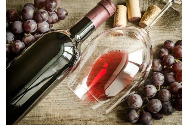 Weinprobe in Radebeul – Rotwein mit Trauben