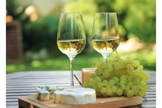 Weinprobe in Radebeul – Weißwein mit Trauben