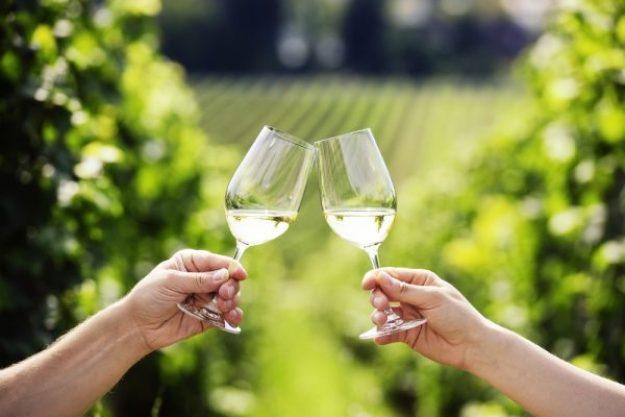 Weinseminar München –Gemeinsam Wein probieren