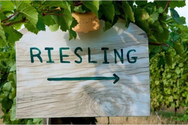 Weinseminar München –Riesling-Verkostung