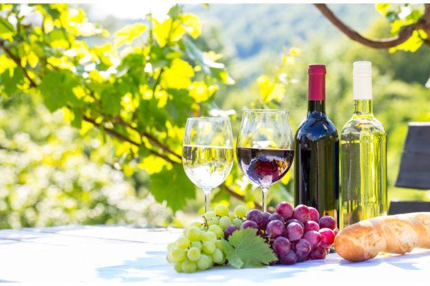 Weinseminar in Nürnberg - Wein draussen genießen