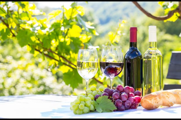 Weinseminar Stuttgart - Weißwein Rotwein