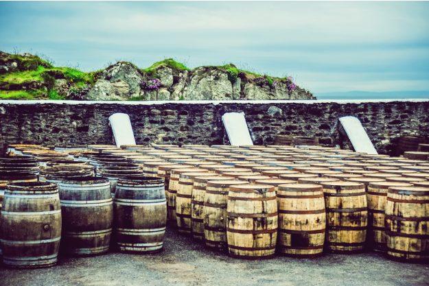 Whisky-Tasting Bonn –Whiskyfässer in Irland