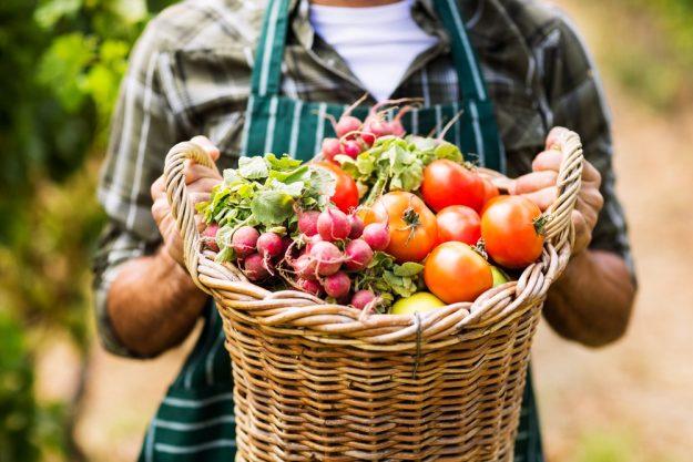 Geschenkidee für Lokalhelden – Bio-Gemüse