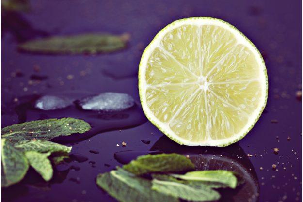 Gin-Seminar Koblenz –Frische Limette