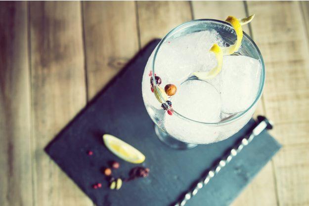 Geschenkgutschein Gin-Tasting – Gin mit Zitronenzeste