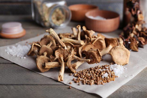 Kochkurs Nürnberg – Pilze