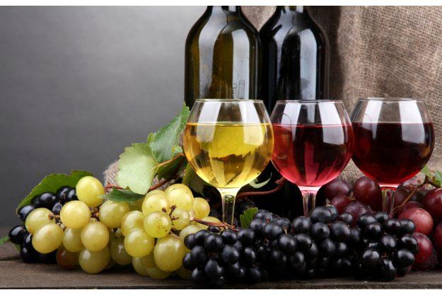 Weinseminar Nürnberg - verschiedene Weine