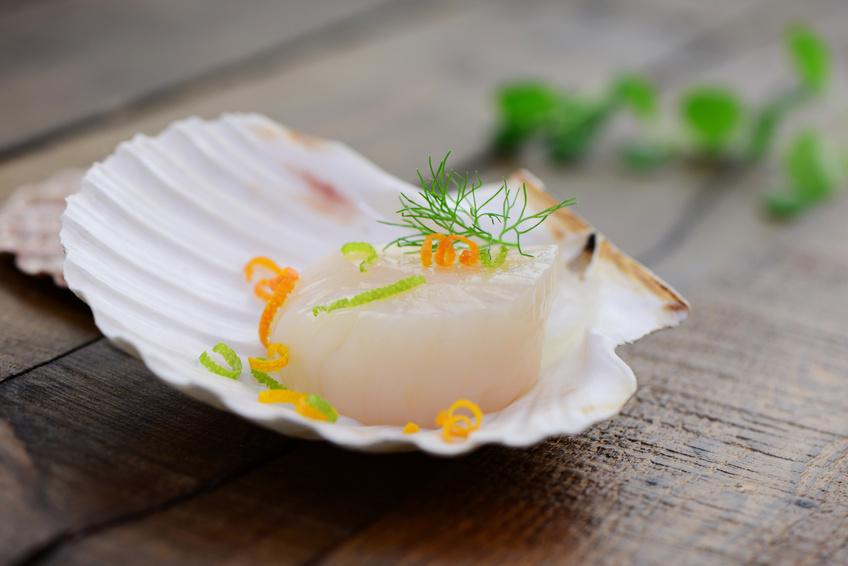Fisch & Meeresfrüchte