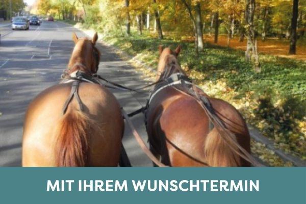 Mit zwei Pferdestärken Berlin genießen