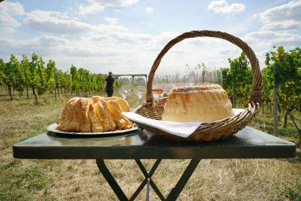 Picknick im Weinberg@Home-ALT - Ganz Deutschland
