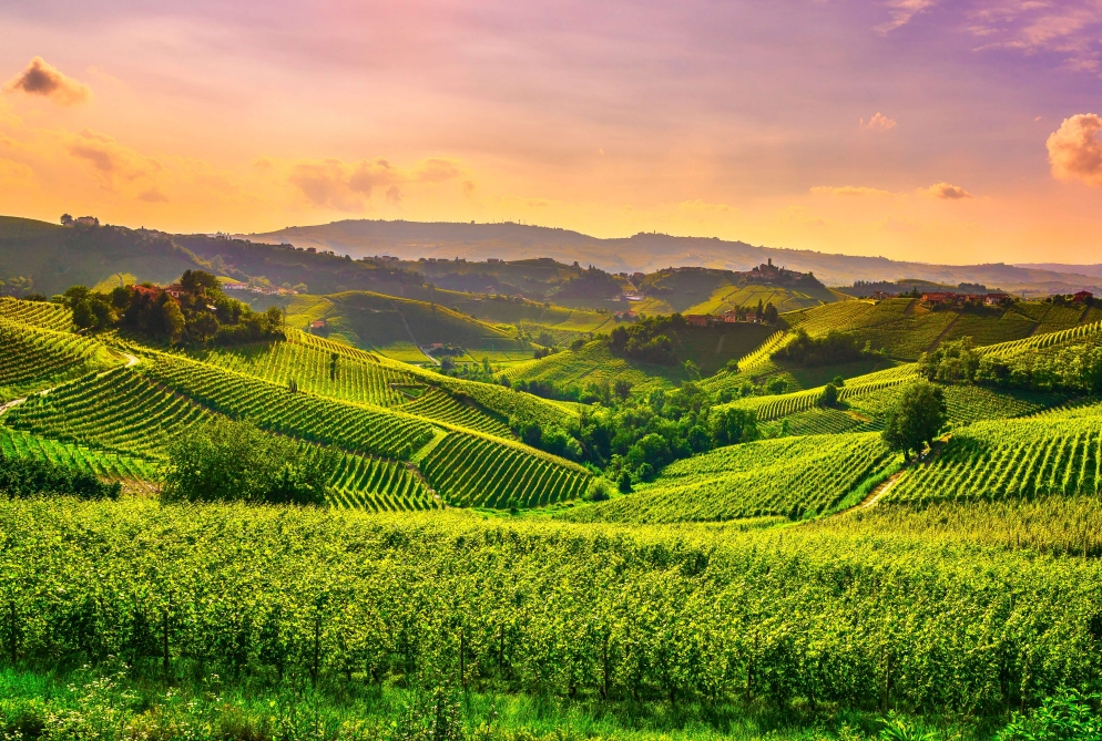 Genussreise ins Piemont@Home für 2 - Ganz Deutschland