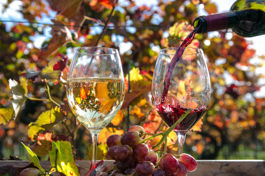Eine geographische Weinreise