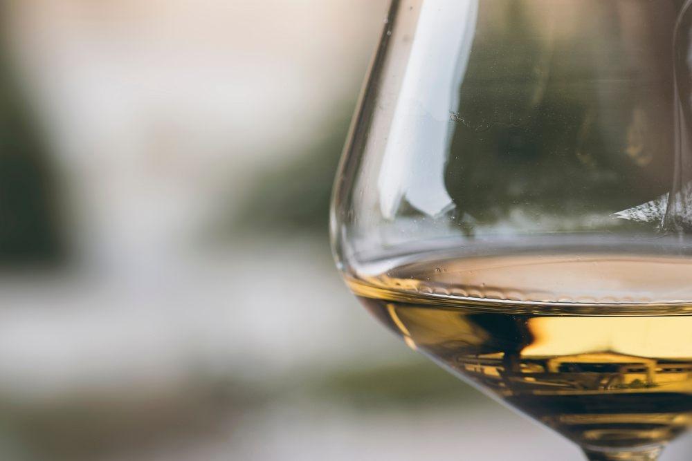 Rebsorten Seminar Chardonnay