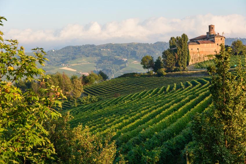 Die großen Weine Italiens